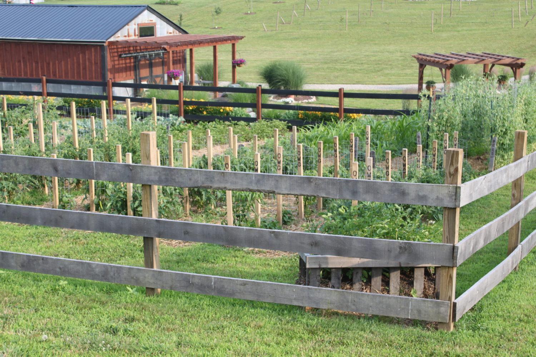 Garden Plan: Fences, Walkways, Growing Rows